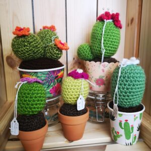 Cacti by Sue